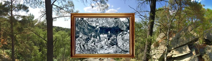 •Pano-Peintres en forêt1