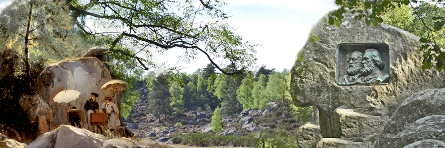 •W8-Forêt des artistes1