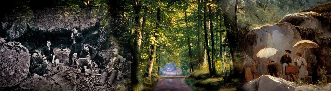 P-Pique nique en forêt N1